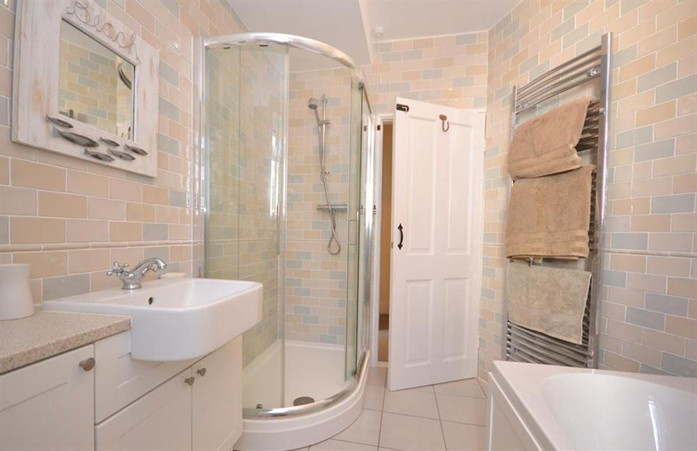 Another view of the bathroom and the shower cubicle at 1 River View, Stoke Gabriel