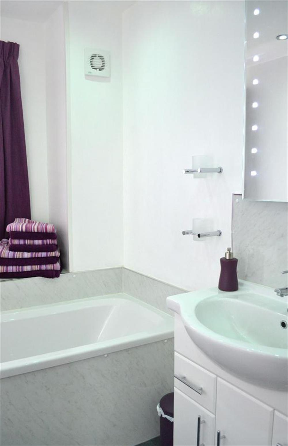Another view of the bathroom at 1C Mayflower Court, Dartmouth