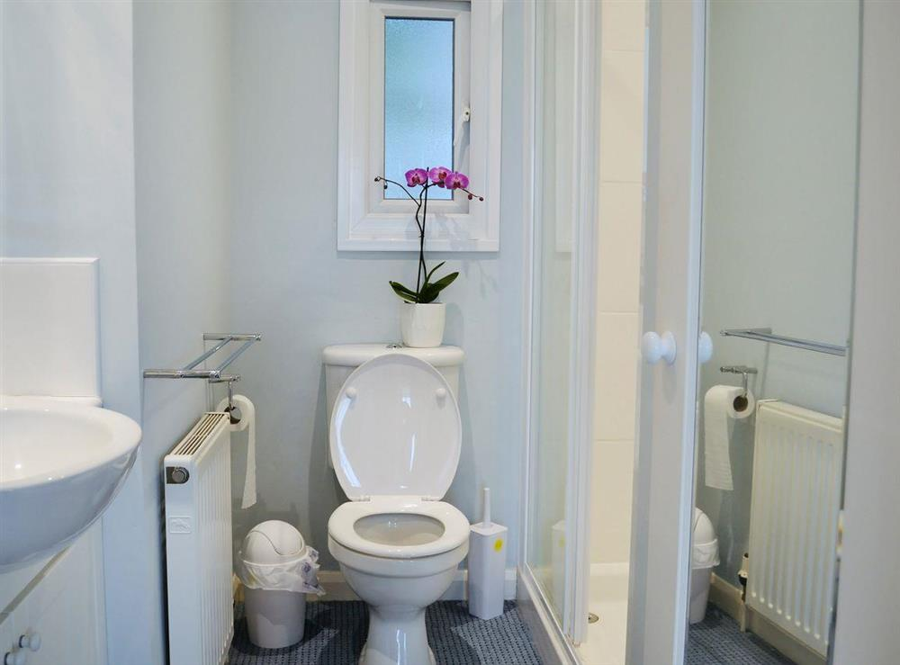 Shower room with large shower cubicle at 2 College View Lower Apartment in Kingswear, Devon