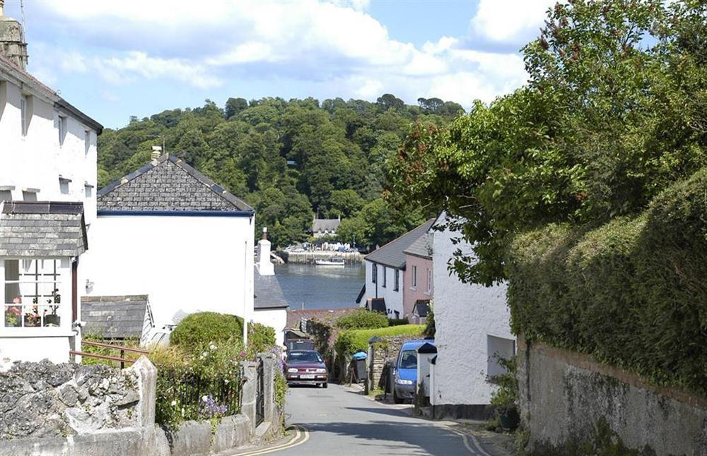 The pretty village of Dittisham, a short boat trip up the Dart estuary at 2A Mayflower Court, Dartmouth