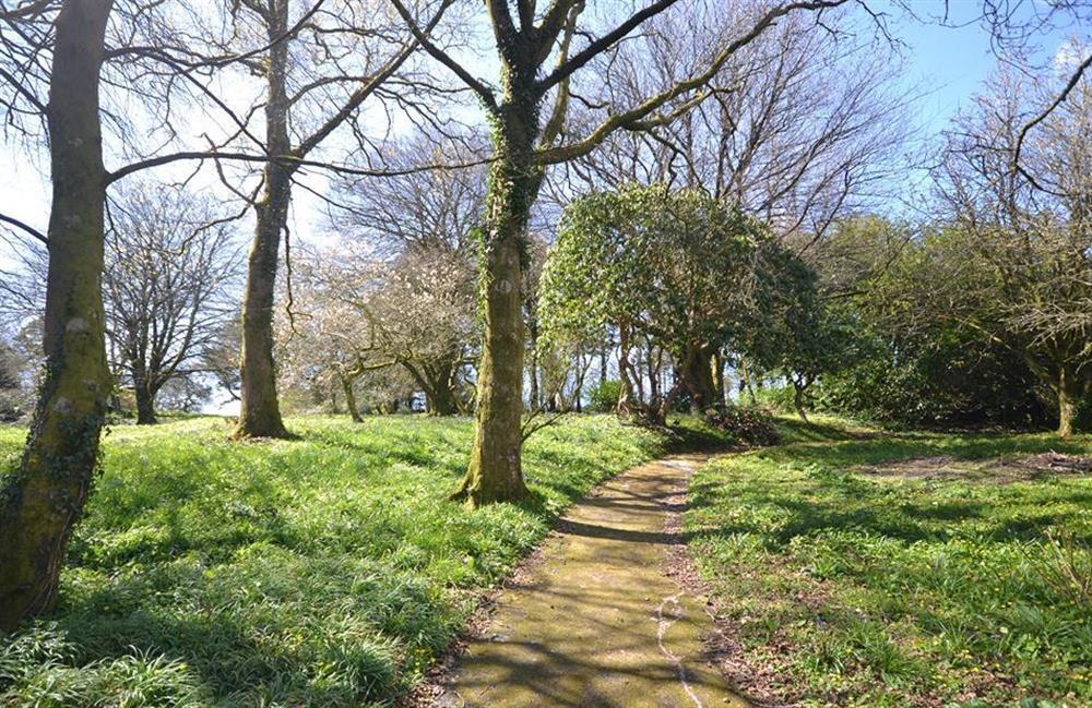 Plenty of acres to explore in the Fallpit Estate at 3 Dufour, East Allington