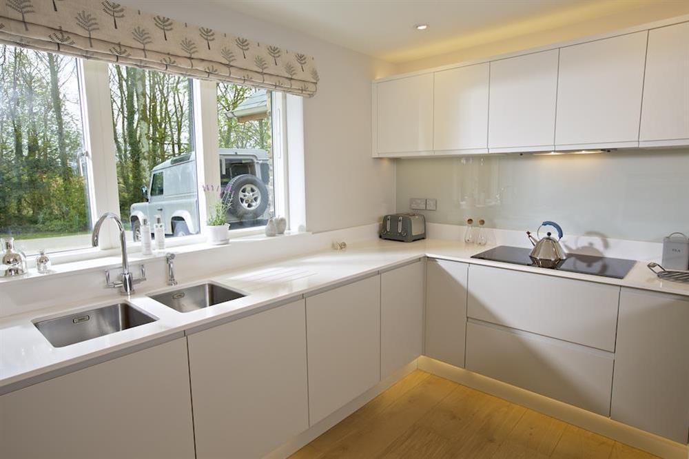 Elegantly designed and very well equipped, hand crafted kitchen at 3 The Drive in , Hillfield, Dartmouth