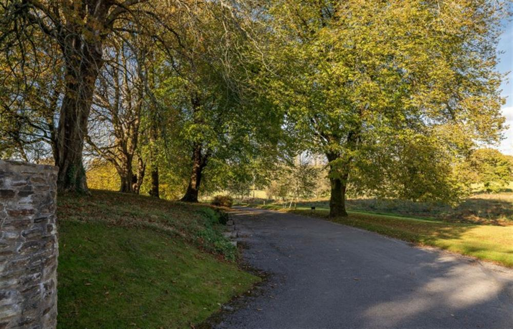 The impressive sweeping driveway of The Fallapit Estate at 4 Bouchard, East Allington