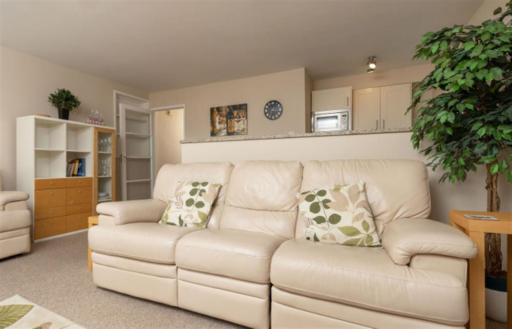 Another view of the comfortable lounge area. at 6 Lee Court, Dartmouth
