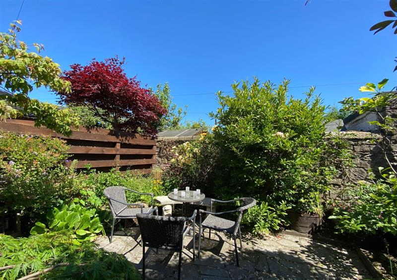 The garden at 6 Ronald Place, Stirling