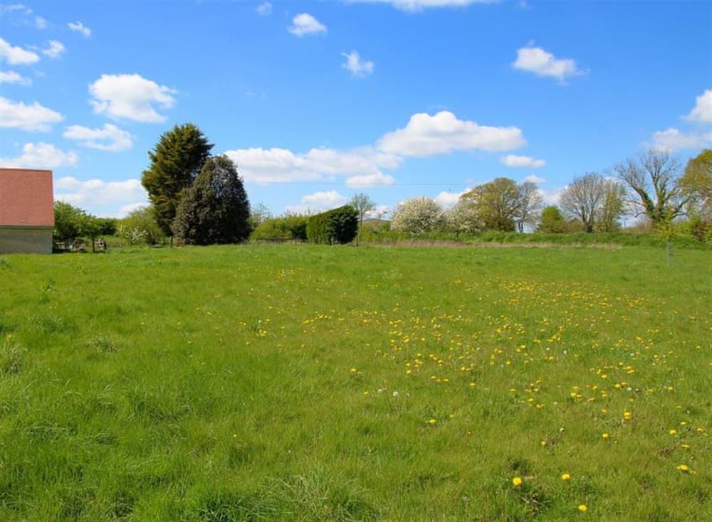 Garden and grounds at Antells Farm Barn in Sturminster Newton, Dorset