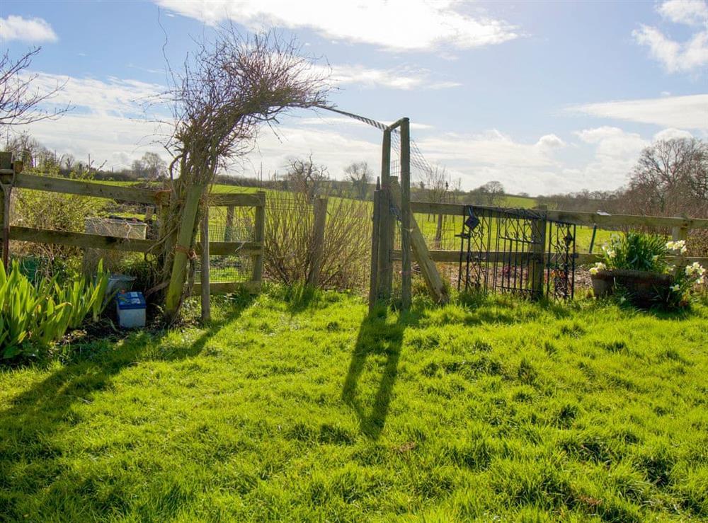 Garden at Anvil Cottage in Twyford, near Shaftesbury, Dorset