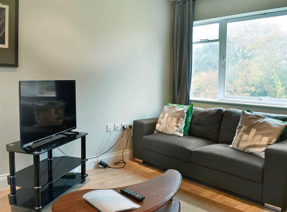 Living area at Apartment Seventeen in Locksheath, England