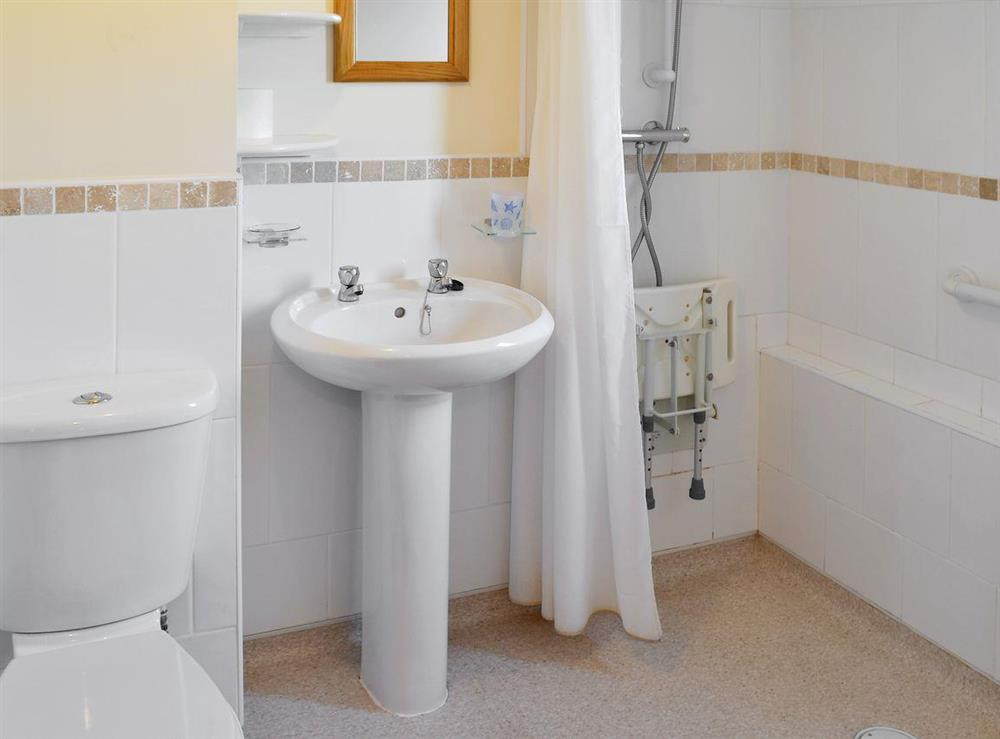 En-suite bathroom at Appletree Barn in Preston, near Canterbury, Kent