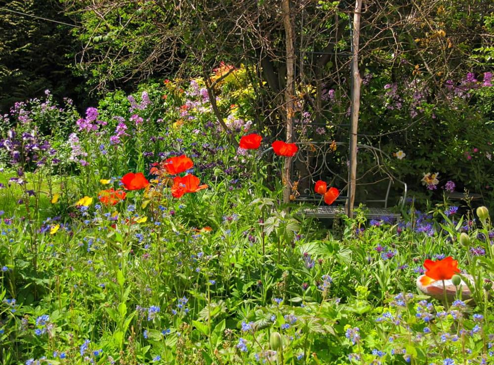 Garden at Appletree Cottage in Kinross, Kinross-Shire