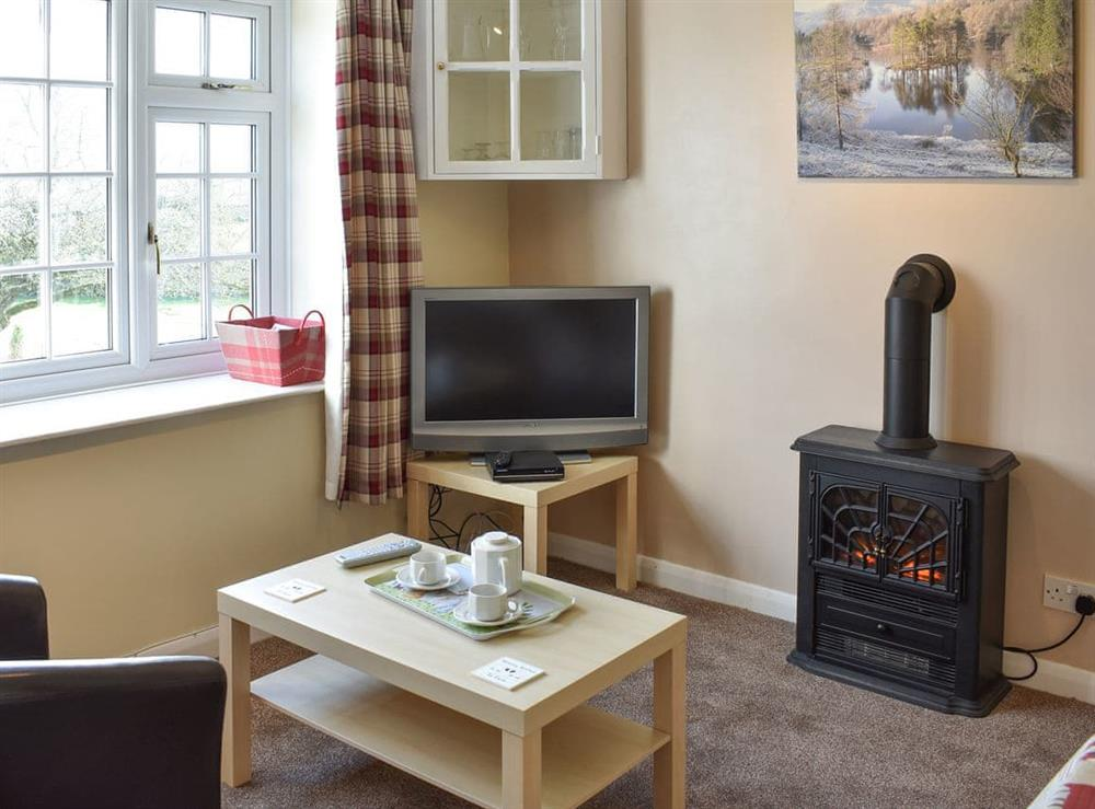 Delightful living room with electric 'woodburner' at Lower Barn,