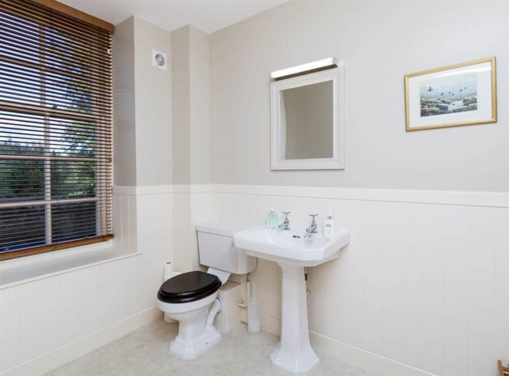 Bathroom (photo 2) at Grey Man,