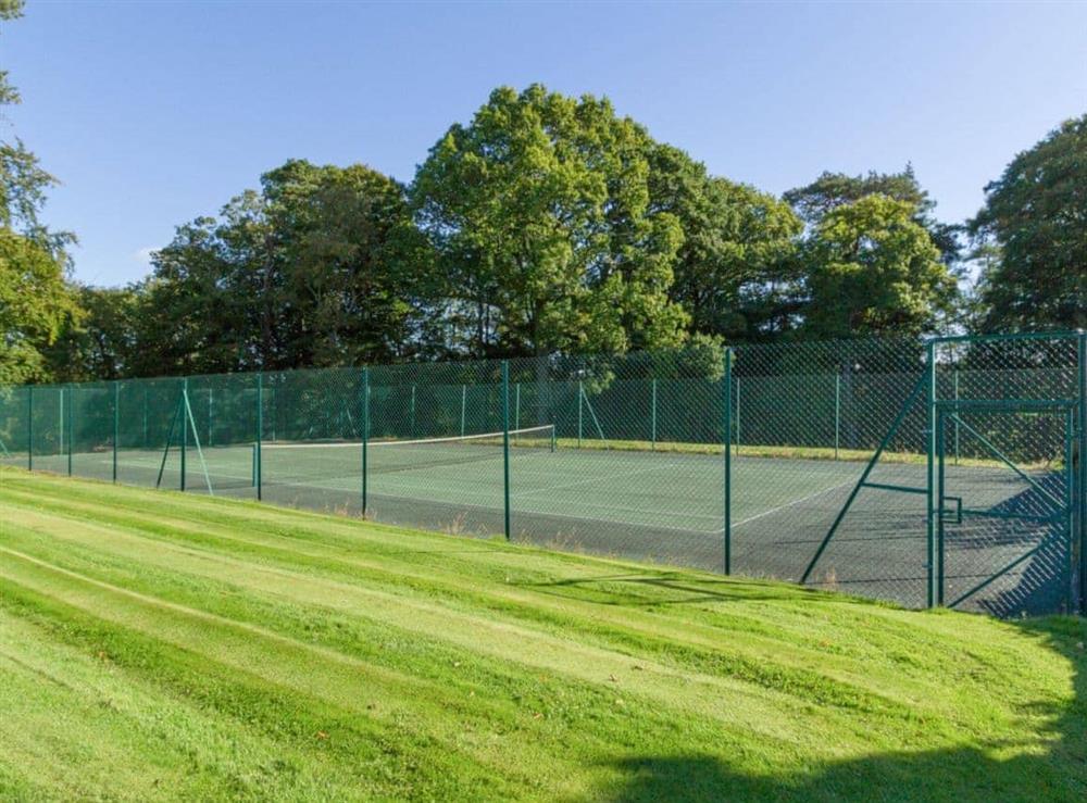 Shared Tennis court at Grey Man,