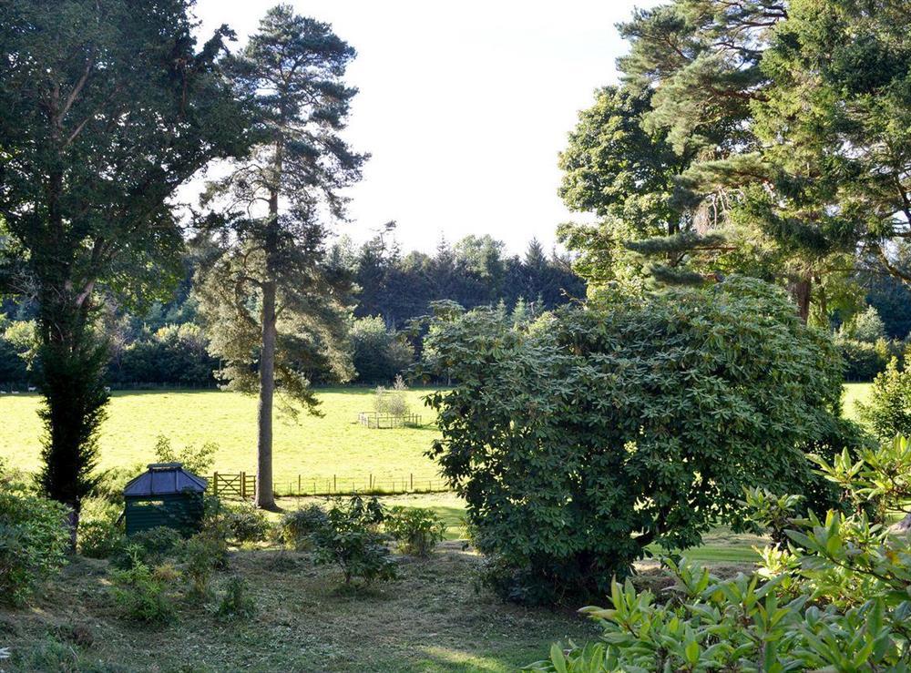 Surrounding countryside (photo 2) at Grey Man,