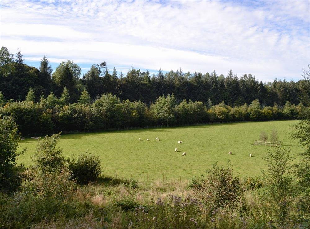 Surrounding countryside (photo 3) at Grey Man,