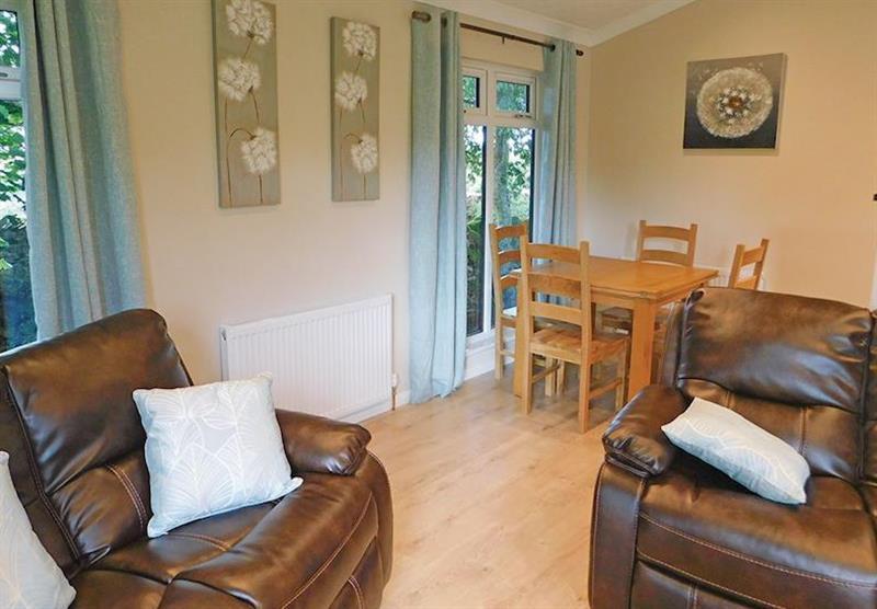 Living room in Bluebird at Bainbridge Ings in Hawes, Yorkshire