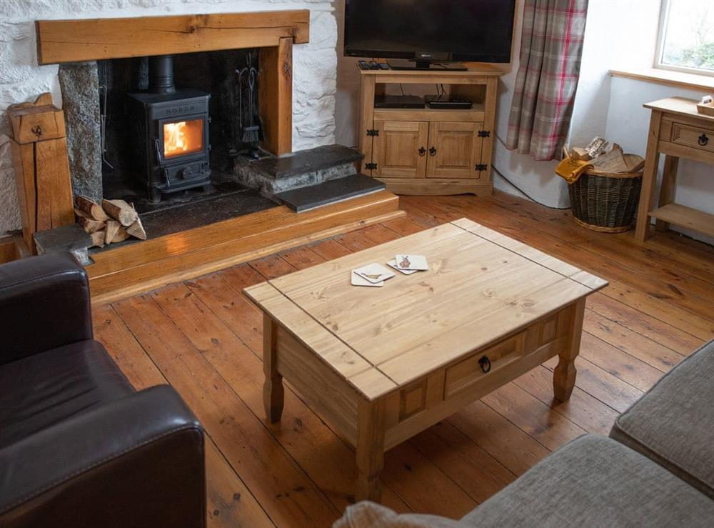 Welcoming living room with wood burner at Balloan Farm Cottage in Lairg, Highlands, Sutherland