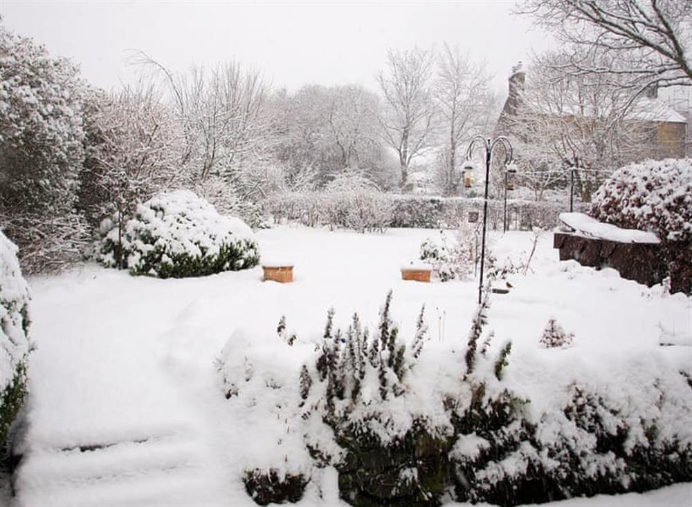 Garden at Balvaig Cottage in Strathyre, near Callander, Perthshire