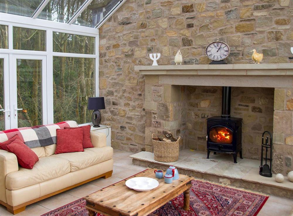 Wood burning stove in lounge at Woodpecker Cottage,