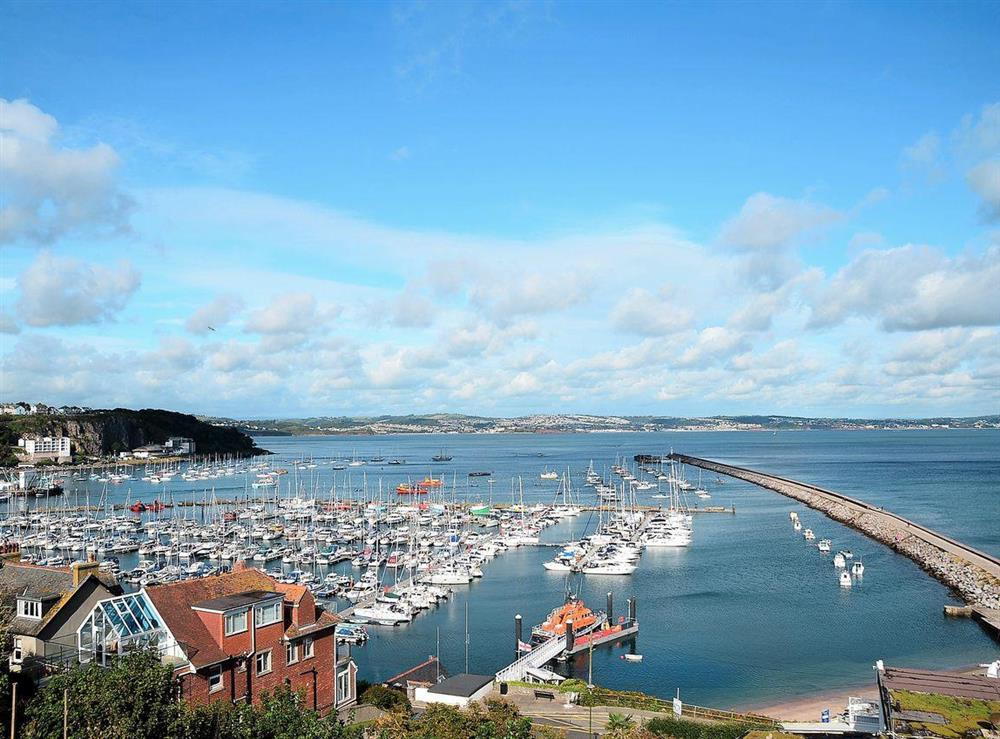 Gaze across the harbour towards Exmouth