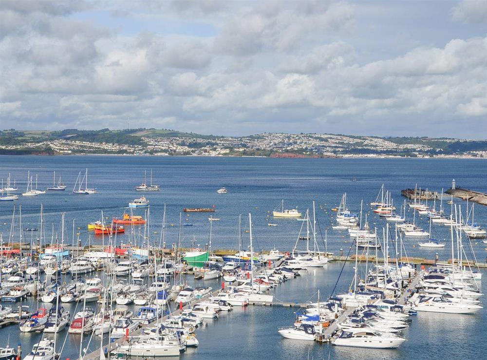 The bustling marina in the heart of Brixham