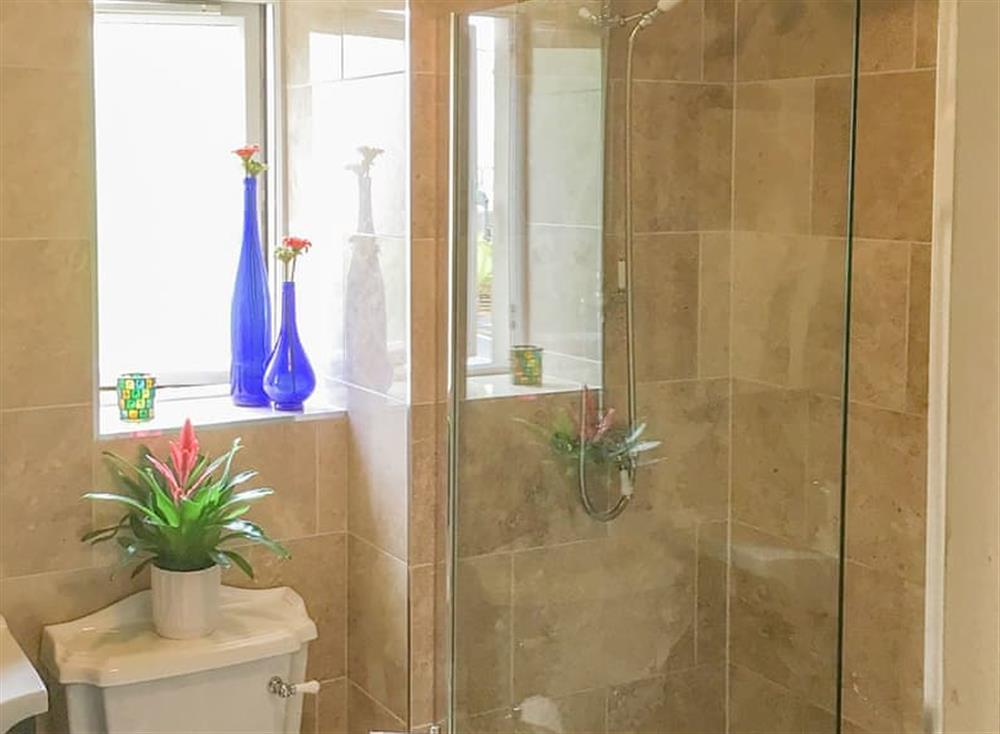 Shower room at Beachside in Ayr, Ayrshire