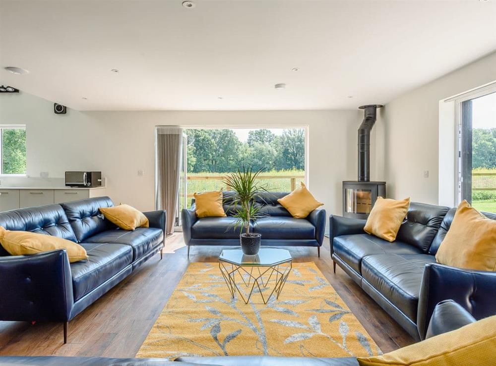 Living area (photo 2) at Alderfen Barn,