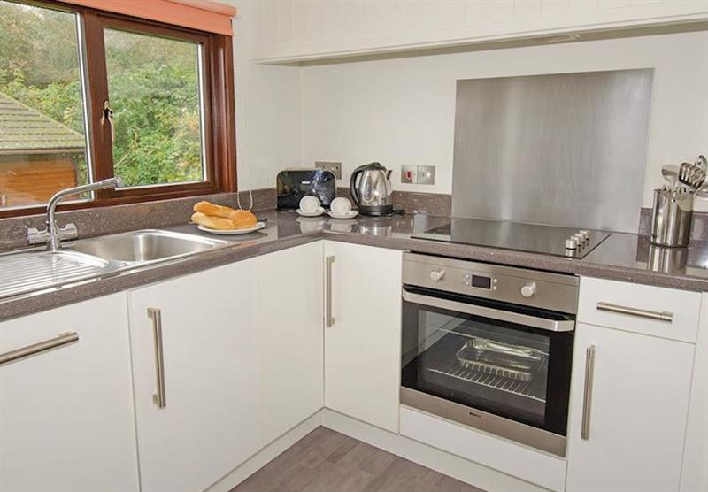 Kitchen in the Premier Plus 6 Lodge at Beverley View in Paignton, South Devon