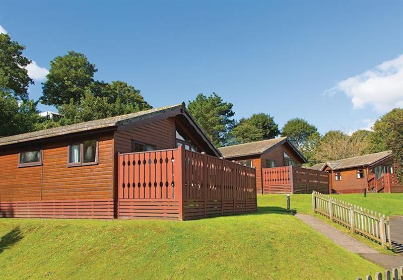 Some of the lodges at Beverley View in Paignton, South Devon