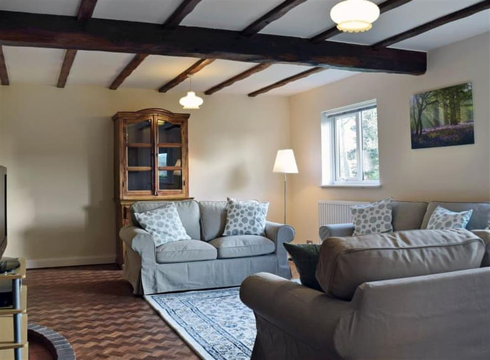 Spacious living room at Birch in Haddiscoe, near Great Yarmouth, Norfolk