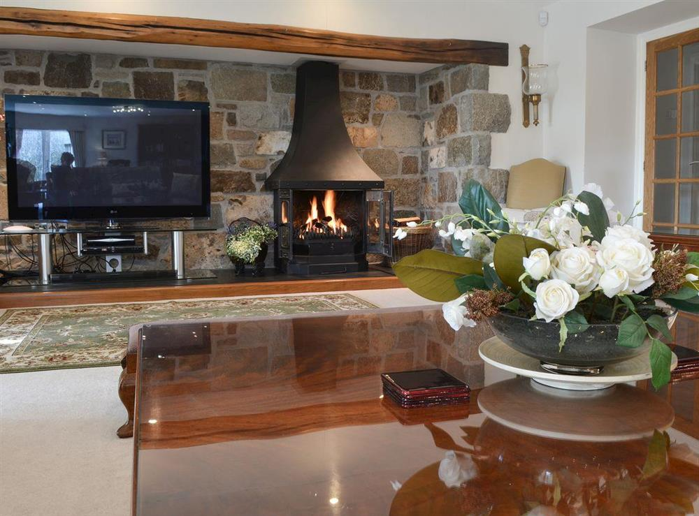 Cosy lounge area with large TV & gas wood burner at Bodrydd,