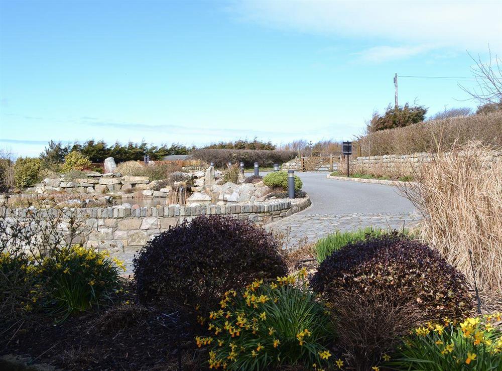 Driveway at Bodrydd,