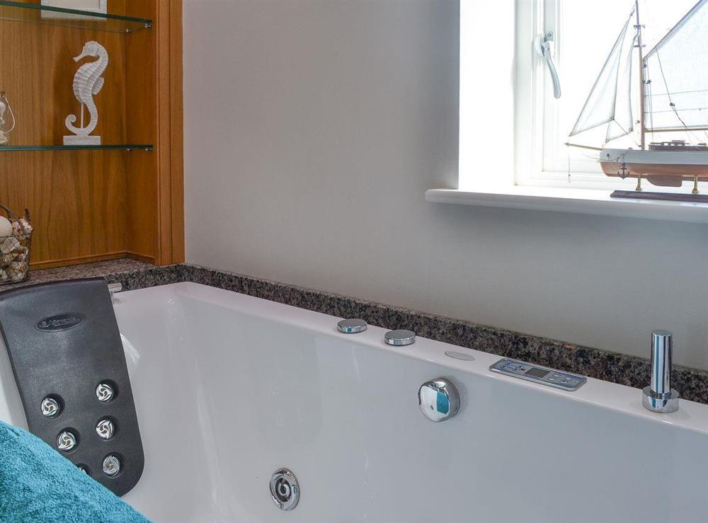 En-suite bathroom with spa bath & shower (photo 2) at Bodrydd,