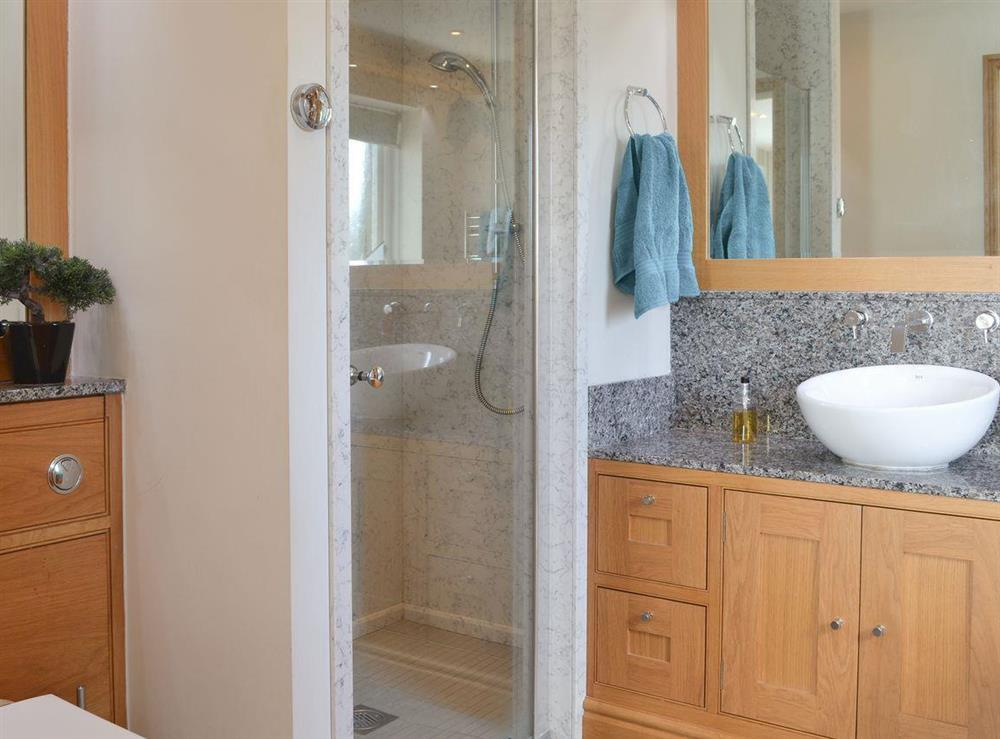 En-suite bathroom with spa bath & shower at Bodrydd,