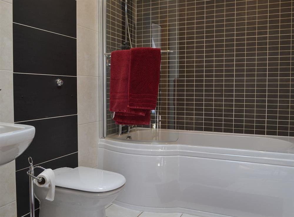 En-suite at Bodrydd,