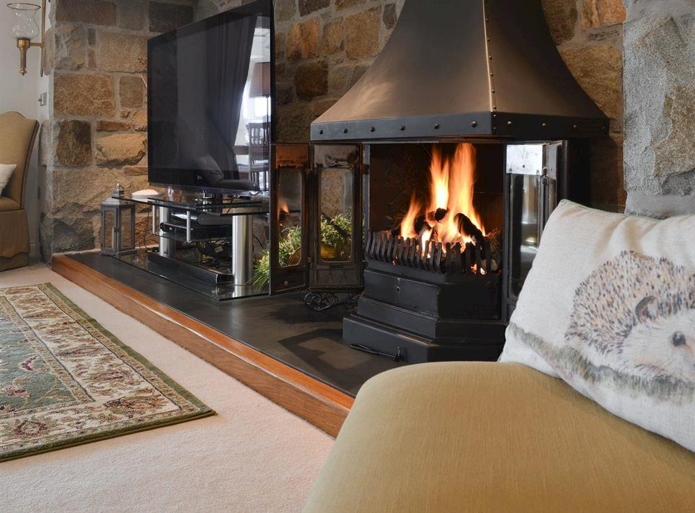 Relaxing living room with gas wood burner at Bodrydd,