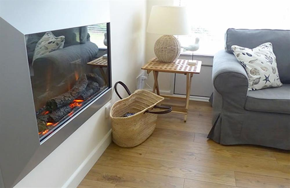 The flame effect fire for those chilly evenings at Bolthole Cabin, Dartmouth