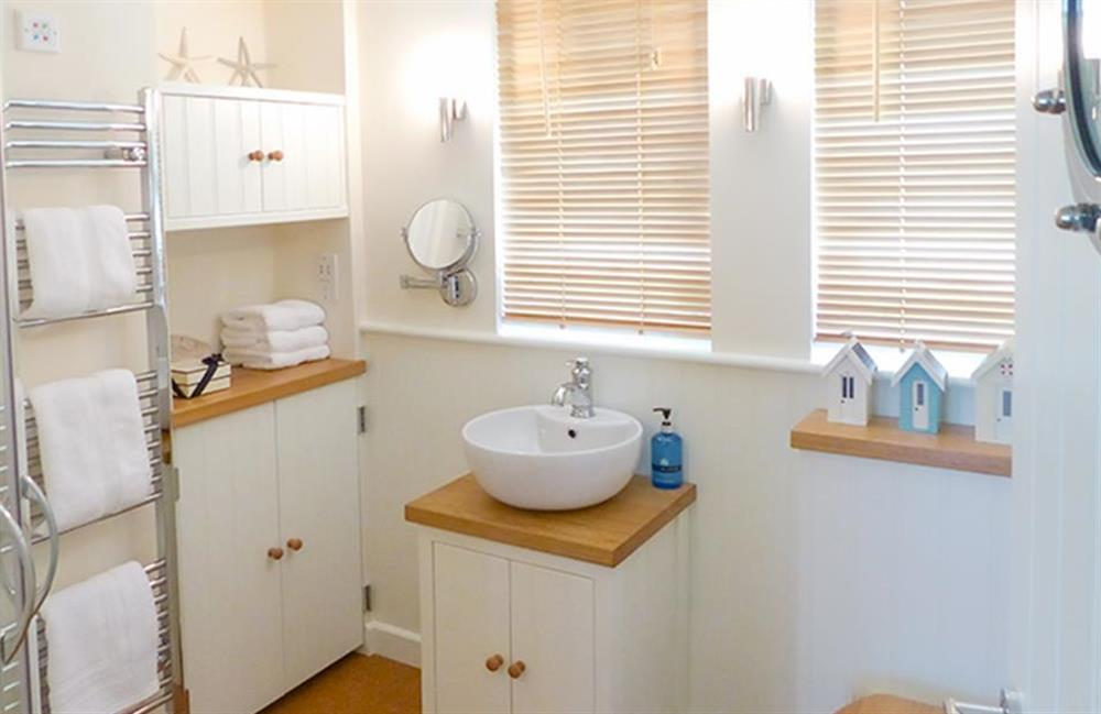 The luxurious shower room at Bolthole Cabin, Dartmouth