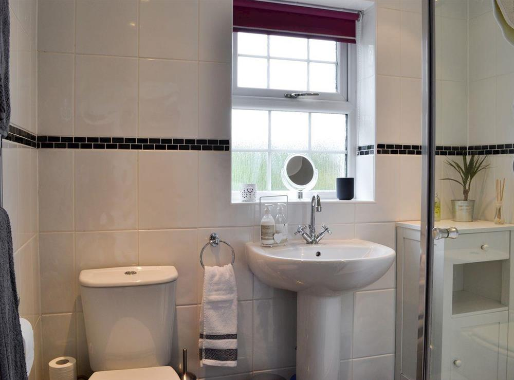 Shower room at Braefoot 1860 in Straiton, near Maybole, Ayrshire