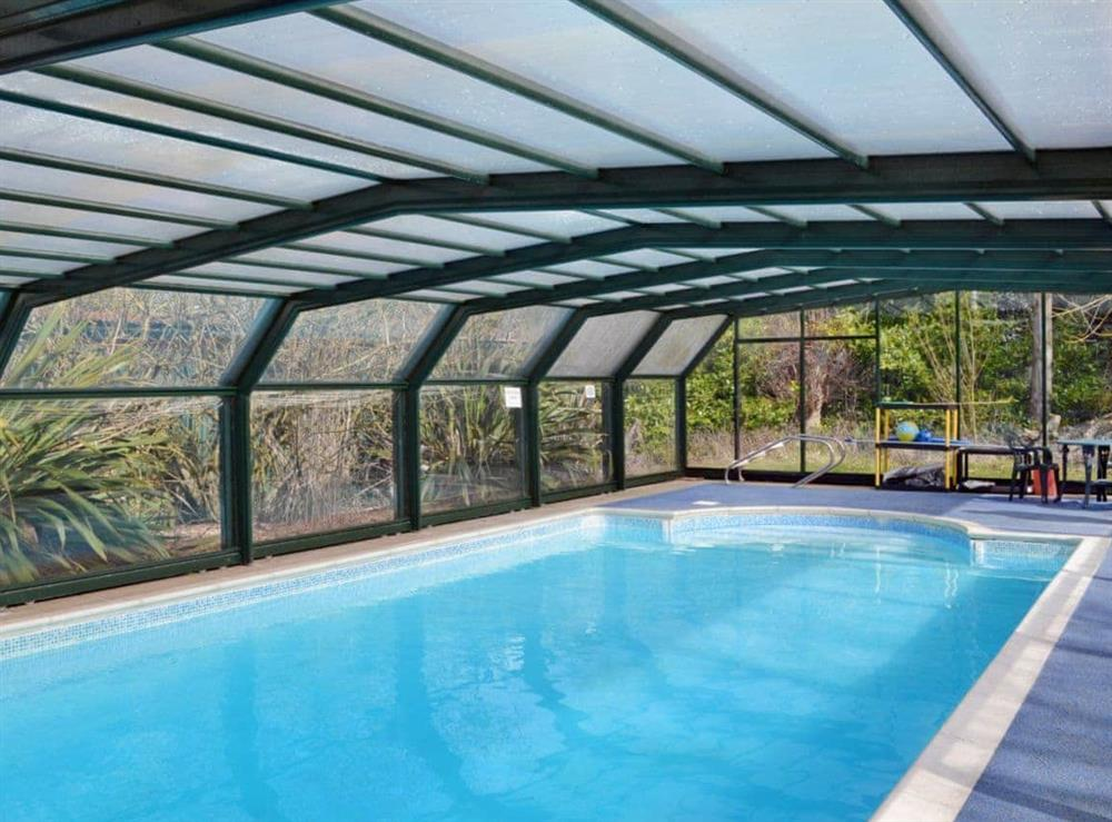 Swimming pool at Briar Cottage in Beccles, Suffolk