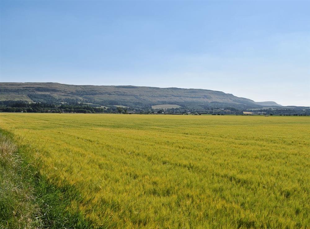 Gargunnoch Hills at Briar Cottage in Gargunnock, near Stirling, Stirlingshire