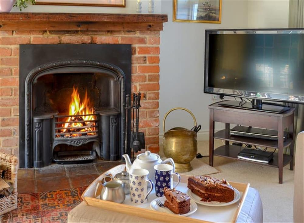 Cosy open fire at Broad Cottage in Barton Turf, near Norwich, Norfolk