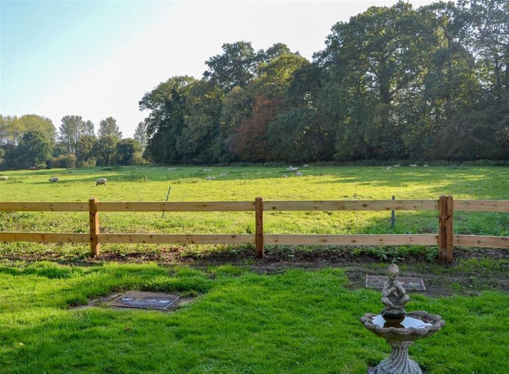 Garden and grounds at Broad Cottage in Barton Turf, near Norwich, Norfolk