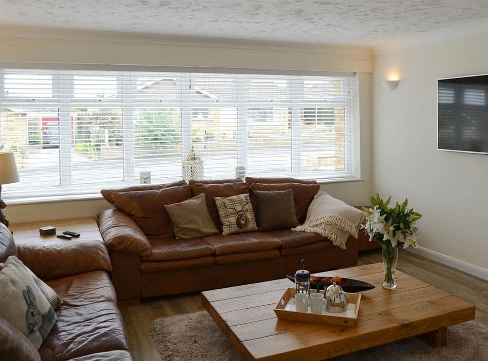 Large comfortable living room at Broadland Hideaway in Martham, near Great Yarmouth, Norfolk