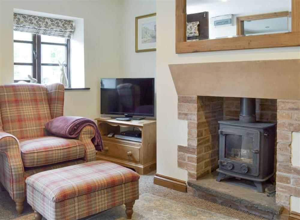 Welcoming living room with wood burner at Bluebell Cottage,