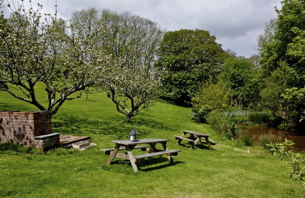 Garden at Buckland House, Nr Dartmouth, Devon