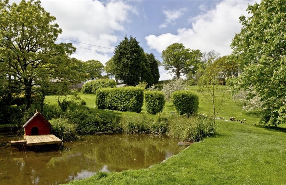 Pond at Buckland House, Nr Dartmouth, Devon