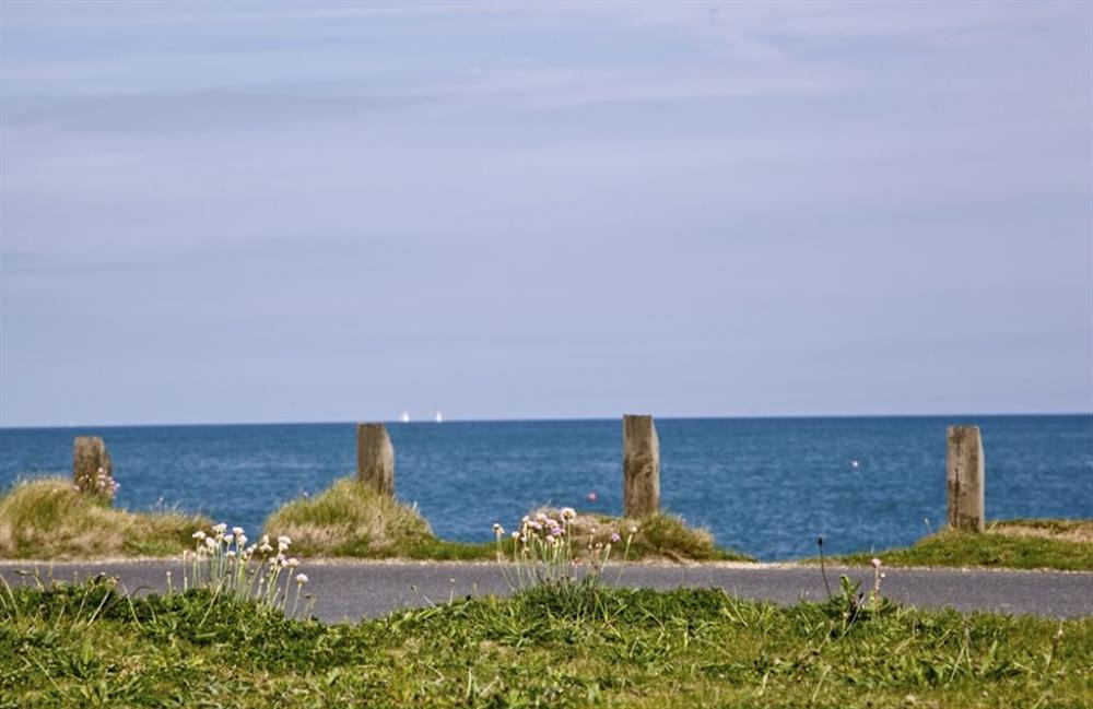 The sea at Buckland House, Nr Dartmouth, Devon