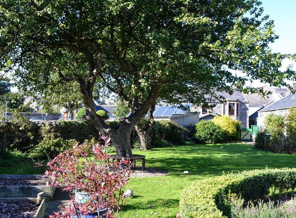 Garden at Burnside Cottage in Portsoy, near Banff, Aberdeenshire