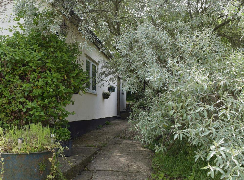 Secluded cottage nestling in the Waveney Valley at Butter Pen in Denton, near Bungay, Norfolk